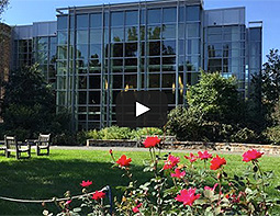 Duke Law Video Tour