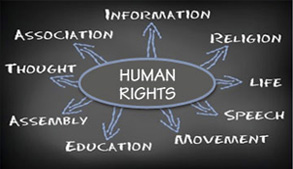 Graphic illustrating human rights