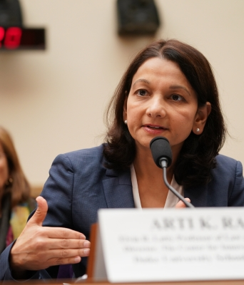 Prof. Arti Rai testifies on Capitol Hill Nov. 19, 2019