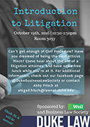 /events/introduction-litigation/